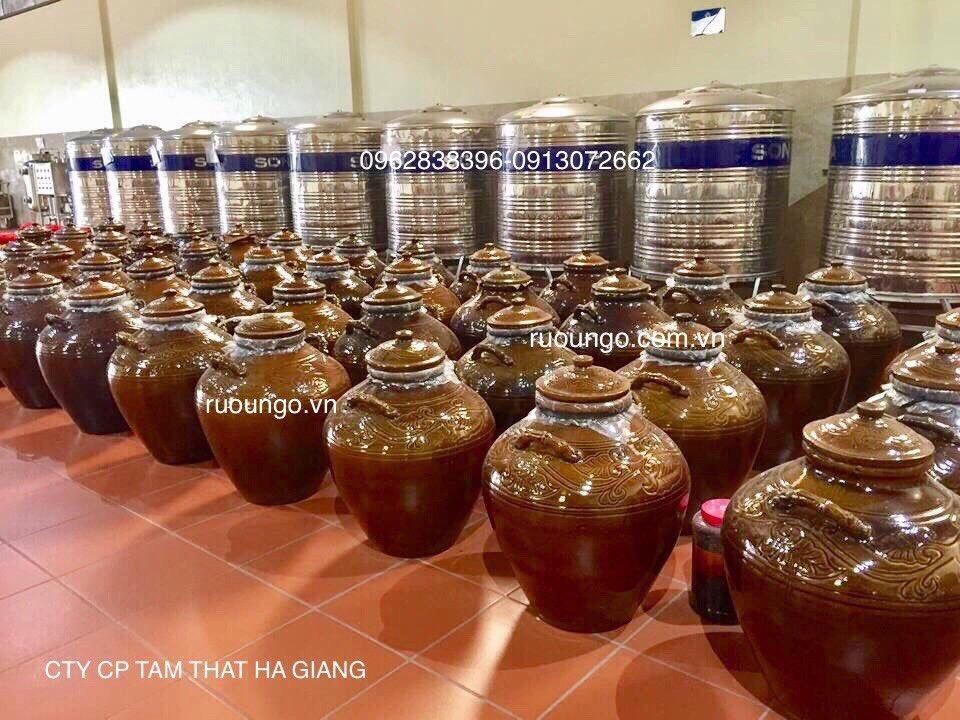 Rượu ngô mới nấu xong được chứa trong chum trước khi hạ thổ.